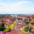 Panorama of Florence — Stock Photo