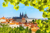 Panorama of Prague Hrad a — Stock Photo