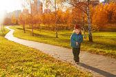 Little boy walk in autumn park — Stock Photo