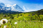 Swiss landscape — Stock Photo