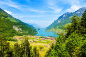 Landscape view near Grindelwald — ストック写真
