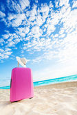 Pink baggage bag and women straw hat — Stockfoto
