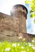 Castillo de buda — Foto de Stock
