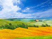 Tuscany landscape — Stock Photo