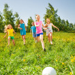 Happy children playing football in green field — Stock Photo #48544633
