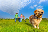 Running dog in front of happy family — Foto Stock