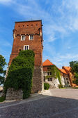 Walls tower Wawel Royal Castle in Krakow — Stock Photo