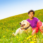 Boy hugging dog sitting on green grass in summer — Stock Photo #48560127