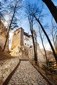 Bran Castle (Dracula castle) — Stock Photo