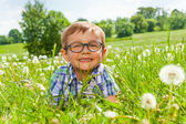 Boy lays on a grass — Stock Photo
