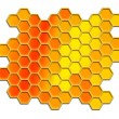 Honey comb pattern background — Stock Photo