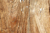 Wooden panel, old and weathered — Stock Photo