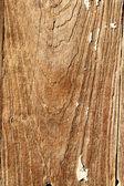 Grão de madeira — Foto Stock