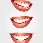 bel sorriso — Vettoriale Stock  #50869113