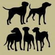 Silhouette of the dogs — Stock Vector #17835057