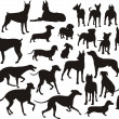 Silhouette of the dogs — Stock Vector #17835039