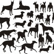 Silhouette of the dogs — Stock Vector