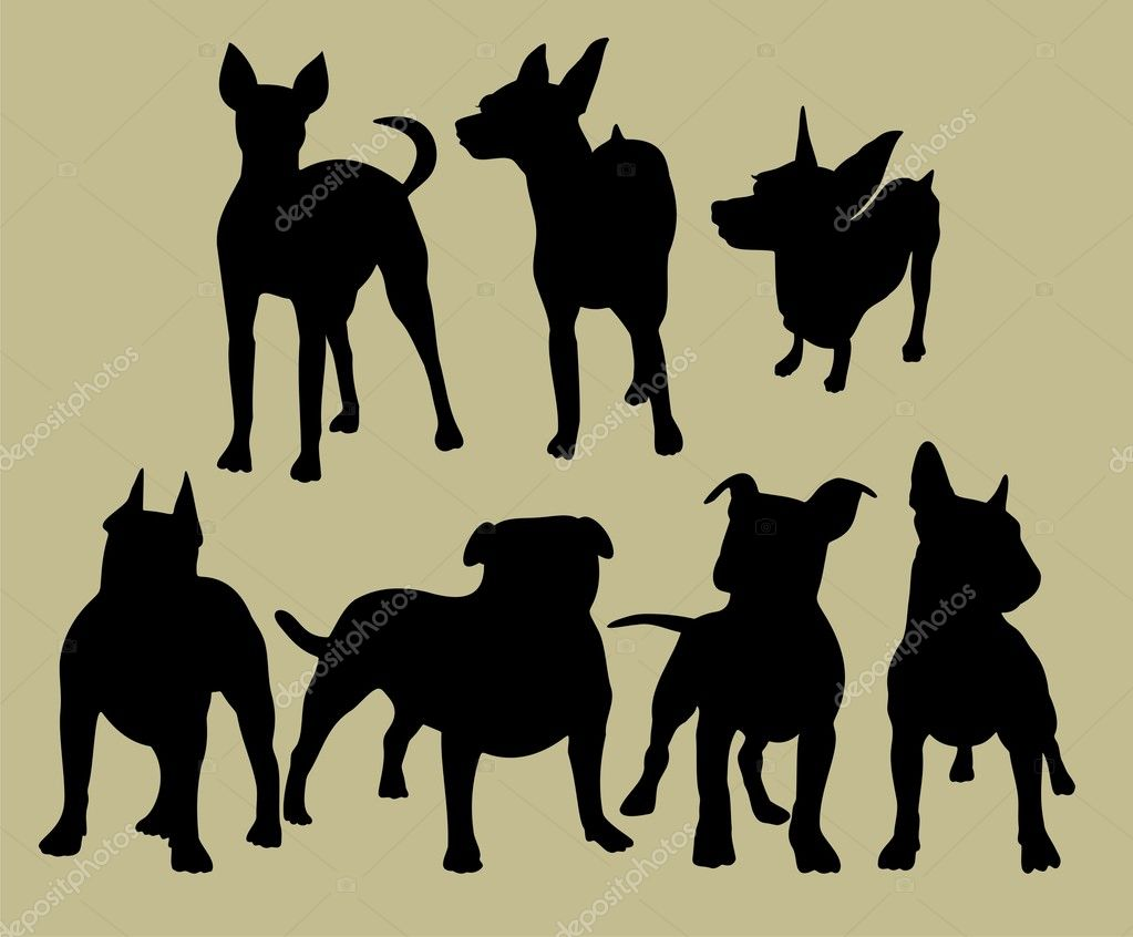 Silhouette of the dogs — Stock Vector #17835037