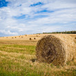 Straw Haystacks - Stock Photo