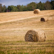 Straw Haystacks — Stock Photo