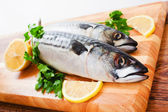 Couple of fresh mackerel — Foto de Stock