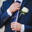 Stock Photo: Groom