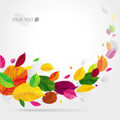 Seasonal autumn leaves background — Stock Vector