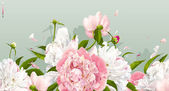 Pink and white peony background — Vector de stock