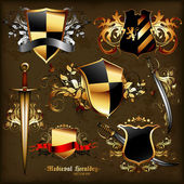 Set of medieval heraldry — Vettoriale Stock
