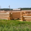Wooden pine log cabins — Foto de stock #12133971