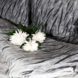 Bouquet of white chrysanthemums on a bed — Stock Photo