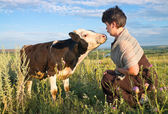 Woman with calf in meadow — Stock Photo