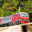 Stock Photo: Railways train on background of green mountain slopes