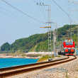 Stock Photo: Train travels along coast of Black Sea