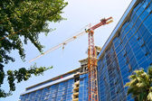 Elevating crane — Stock Photo