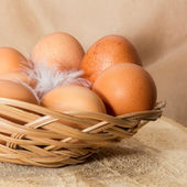 Eggs in wattled basket  — Stok fotoğraf