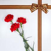 Red carnations tied Georgievsky tape — Stock Photo