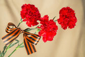 Red carnations tied Georgievsky tape — Stock Photo