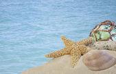 Muscheln auf sand mit glaskugel mit blauem wasser — Stockfoto