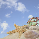 Seashells on sand with glass ball with blue sky — Stock Photo