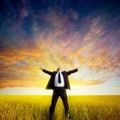 Businessman on field — Stock Photo