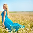 Beautiful woman wearing blue dress on a field — Stock Photo #13489390