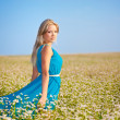 Beautiful woman wearing blue dress on a field — Stock Photo #13489393