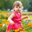 Royalty-Free Stock Photo: Little girl in orange flowers