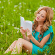 Stock Photo: Serious woman reading book outdoors