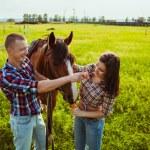 Young couple feeding horse — Stock Photo
