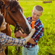Young couple feeding horse — Stock Photo #31867775
