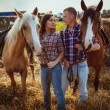Couple standing on farm with horses — Stock Photo