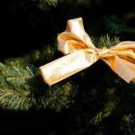 Gold christmas bow on fur-tree — Stock Photo #3348227