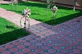 Path in a garden — Stock Photo